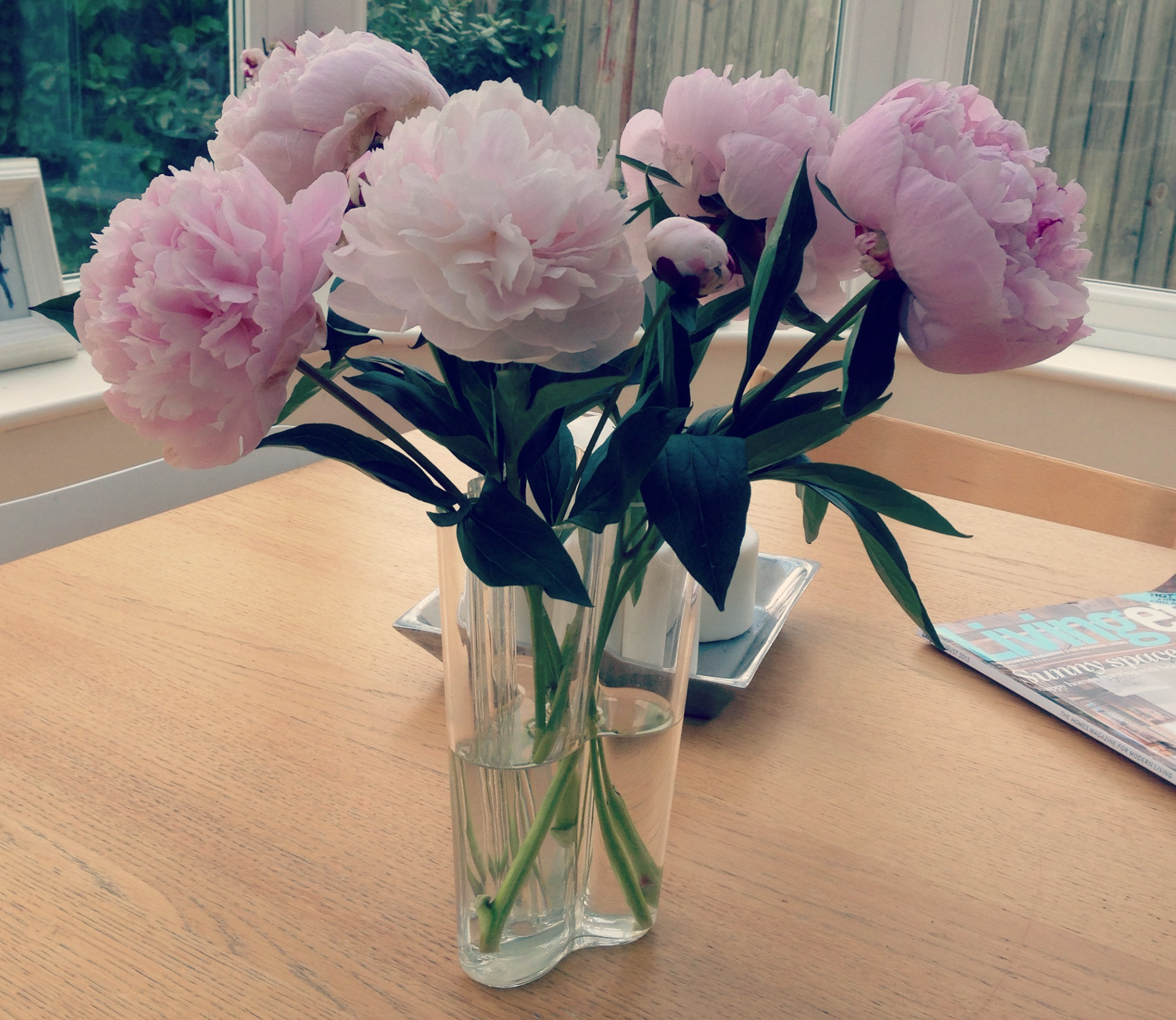 Awesome Buying Peonies On A Friday Has Become A Rather Nice Habit. Sometimes My  Husband Has Even Been Known To Buy Them For Me!
